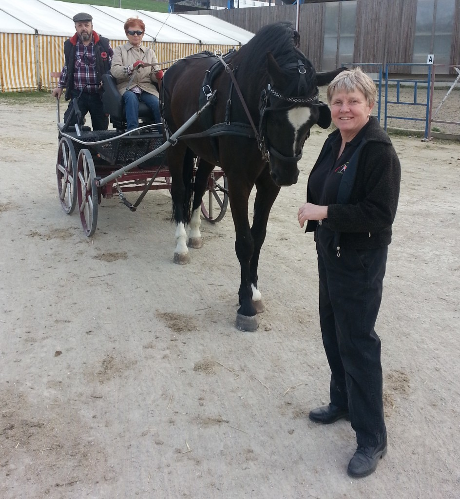 Centered Driving Instruktorin Peggy Brown